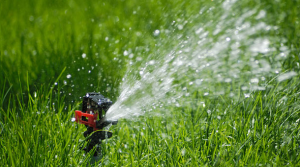 we install sprinkler systems in Dale City